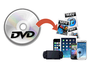 DVDリッピング